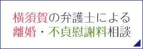 横須賀の弁護士による離婚・不貞慰謝料相談